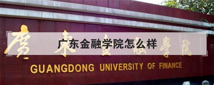广东金融学院怎么样
