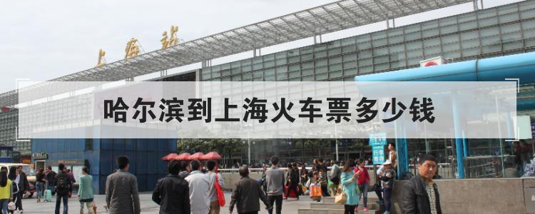 哈尔滨到上海火车票多少钱