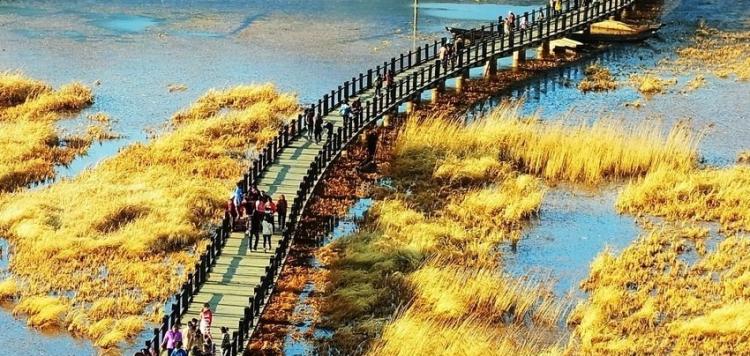 丽江到泸沽湖要多久