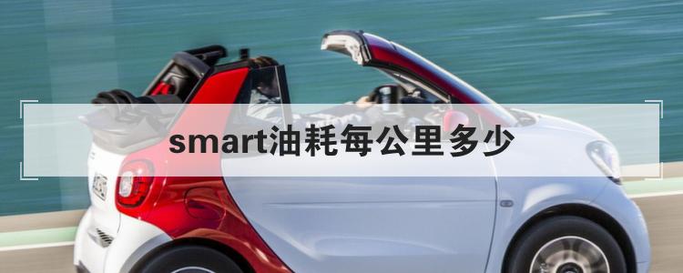 smart油耗每公里多少